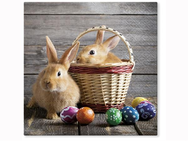 Servett Kaniner