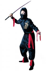 Ninja barn