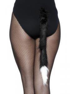 Katt-svans