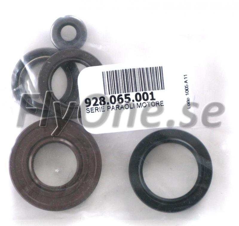 928.065.002 ENGINE OIL SEALS SET THOR 200