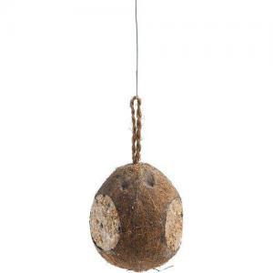Vildfågel Kokosnöt m tre öppningar