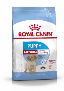 RC Medium Puppy