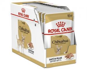 RC Wet Chihuahua 12x85g