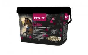 Pavo E-Plus 3kg