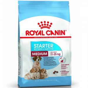 RC Medium Starter Mother & Babydog