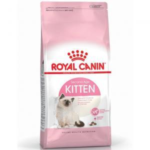RC Kitten
