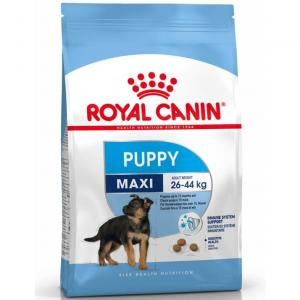RC Maxi Puppy