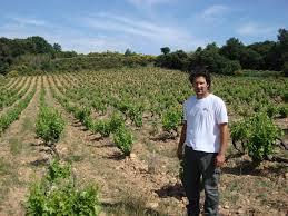 Blandad Vinlåda - Rhône Cru (6 flaskor rött)