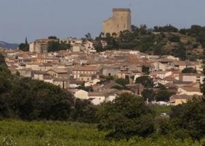 Blandad Vinlåda - Rhône Cru (6 flaskor rött/rosé)