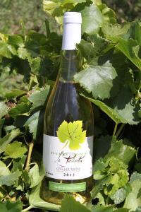 Domaine le Pointu - Côtes du Rhône Blanc Cuvée Vieux Chêne 2018 (vitt)