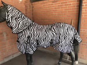 Zebra Flugtäcke