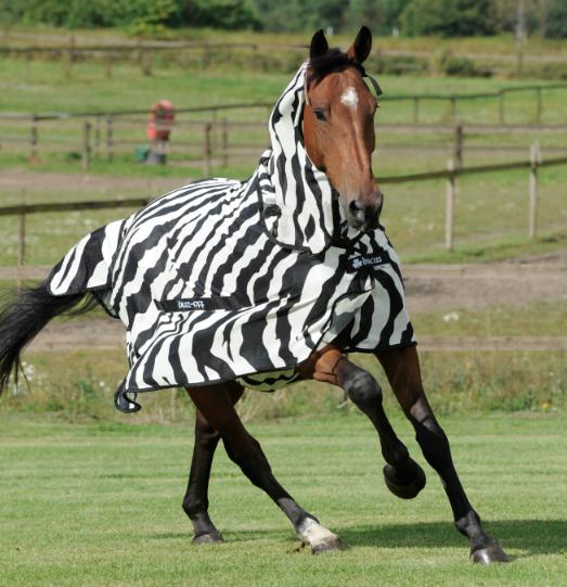 Bucas Buzz off Zebra