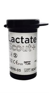 Lactate Scout-strips 24 st