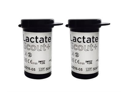 Lactate Scout-strips 48 st