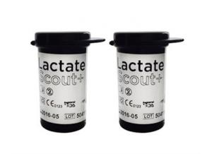 Lactate Scout-strips 48 st