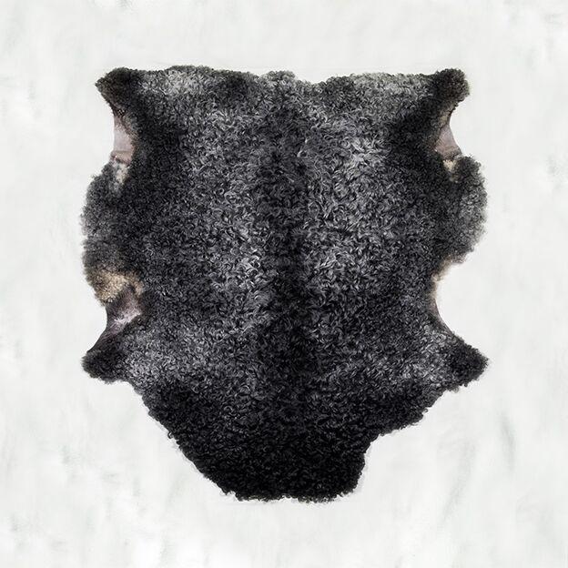 Nr. 010 Grått tackskinn med mörkare ål på ryggen, storlock från Smedstad fårgård.