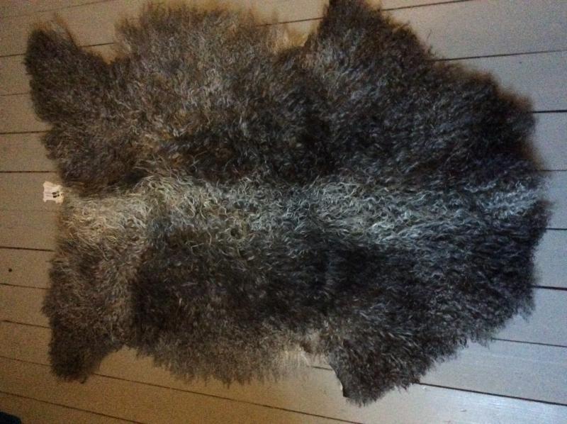 Nr 029 Grått långhårigt lammskinn med ljus ål på ryggen från Smedstad Fårgård.