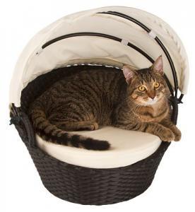 Katt Lounge Chillout
