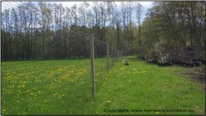 Svart slitstarkt nät höjd 2 (100m)