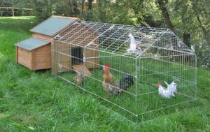 Utegård för höns/kaniner 220x103cm