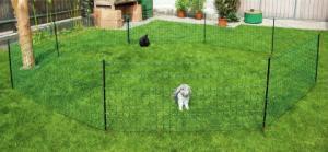 Kanin Elnät Ovinet 65cm 25meter GRÖNT