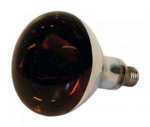 Infraröd lampa härdat glas 150W