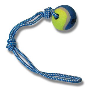 Bollslunga med tennisboll