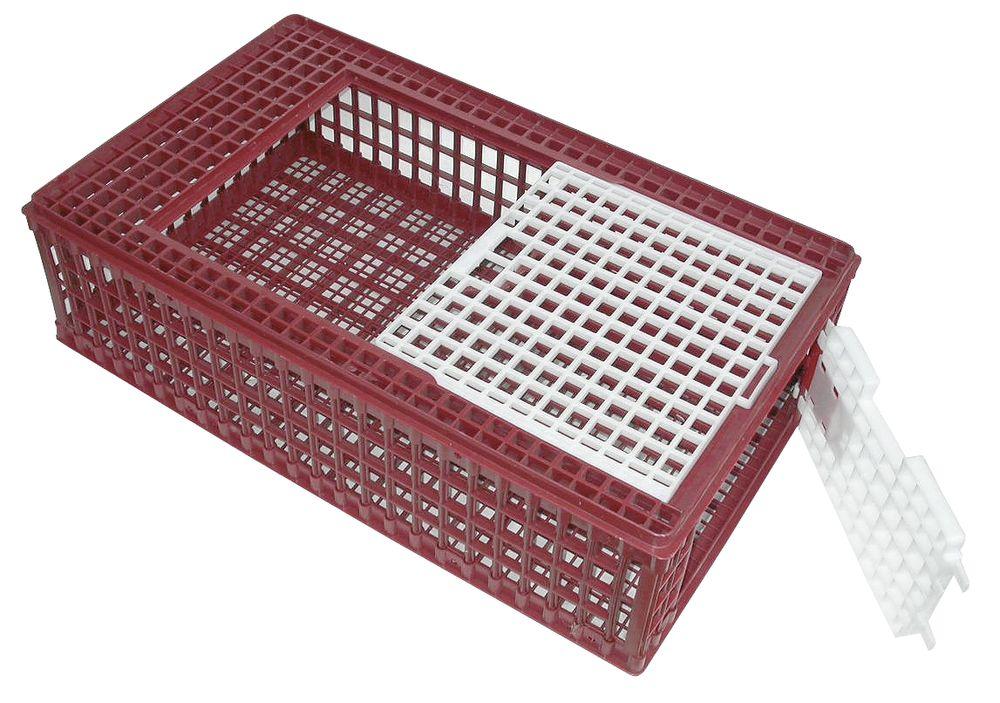 Transportbox fjäderfä
