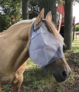 Cashel flugmask Horse