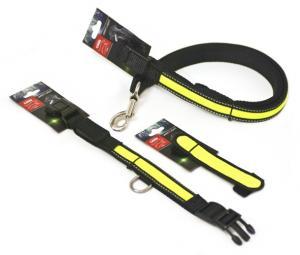 Active Canis LED Hundhalsband