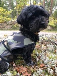 Gustaf & Evita softshell hundtäcke camouflage