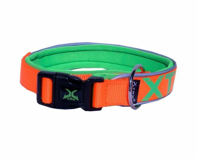 Neon flash collar orange
