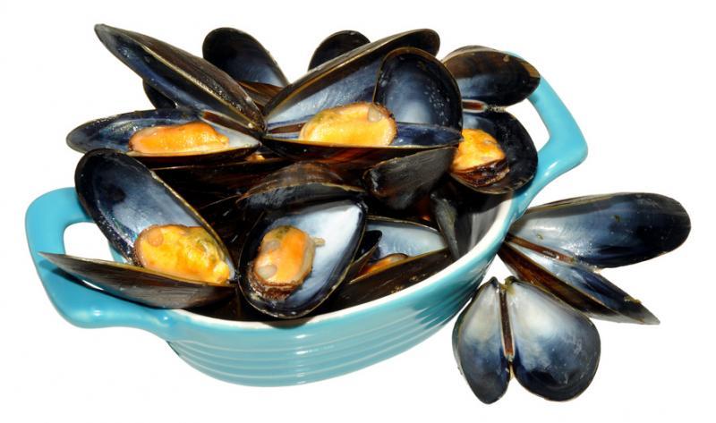 Blåmusslor med skal + 1 burk musseljuice säljes som kit