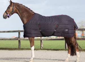 QHP Stable Rug 200g