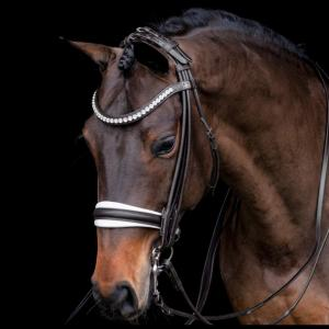 SD Design Belissimo Roll Dubble Bridle