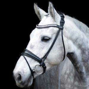 SD Design Träns Mystery Roll Bridle
