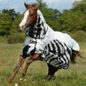 bucas buzz off rain zebra full neck