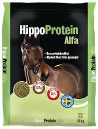 hippo protein alfa göteborg