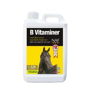 b-vitamin häst