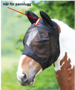 Fine Mesh Fly Mask with Ears - Open Forelock