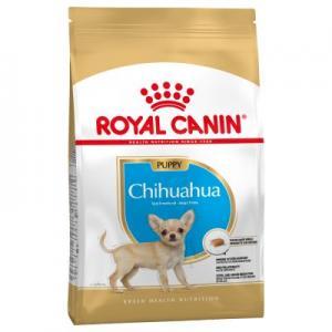 royal canine chihuahua valp