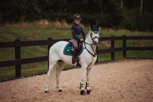 Hoppschabrak Emerald Pony