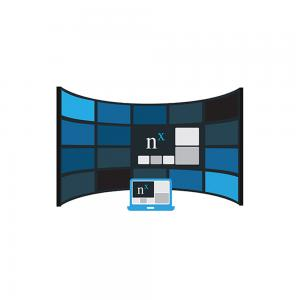 NX Witness Video Wall License