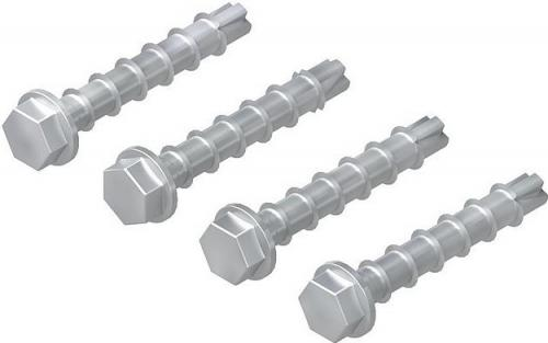 Concrete Anchor Bolt 8x55 4-pack