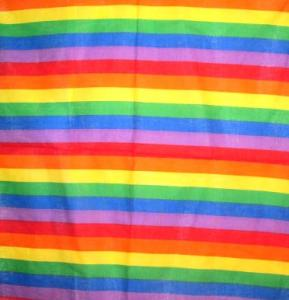 Bandana -  Pride flagga