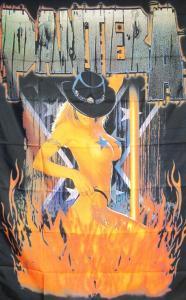 Poster-  Pantera