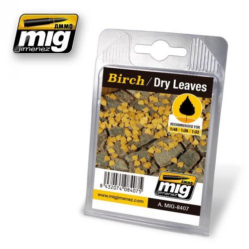 BIRCH / DRY LEAVES