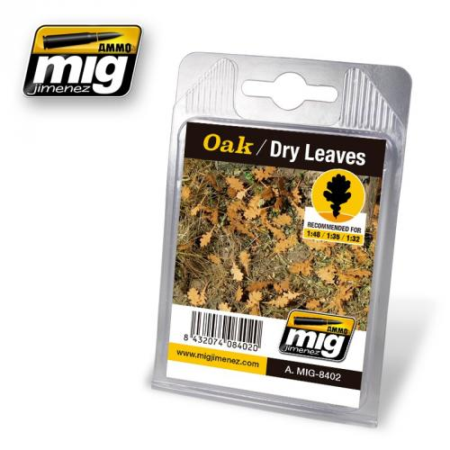OAK / DRY LEAVES