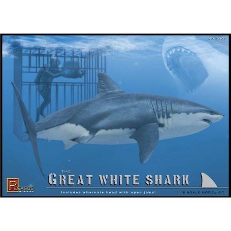 Great White Shark & Dive 1/18