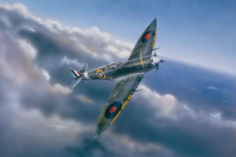 Supermarine Spitfire Mk.Vi 1/24